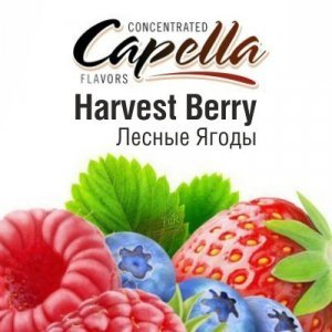 CAP Harvest Berry