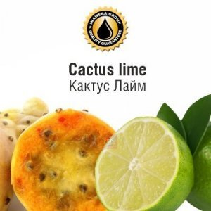 INW Cactus Lime