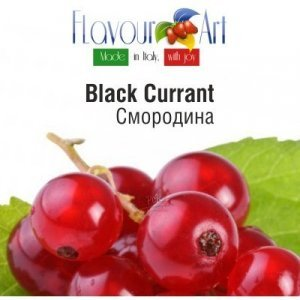FA Blackcurrant